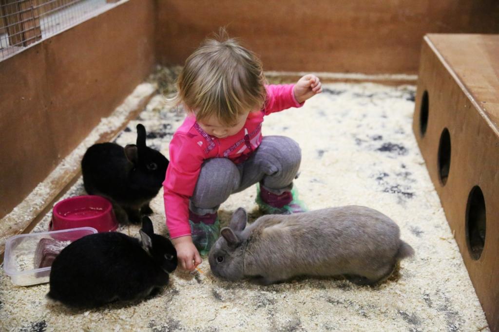 фото девочка и кролики